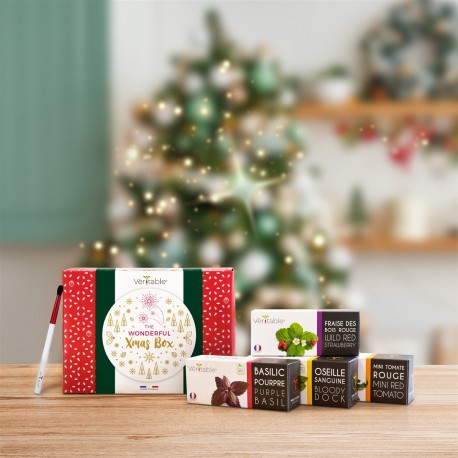 christmas-giftbox-2019-3